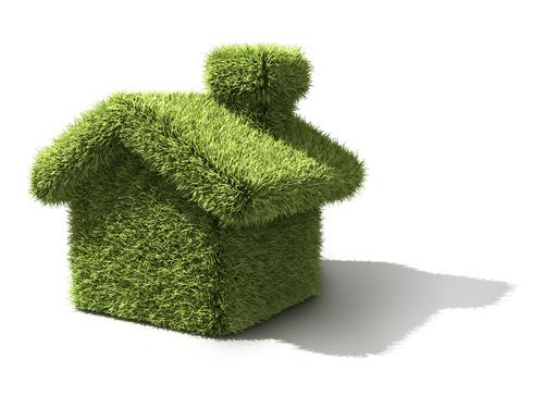 Cartoon grass house to represent green building